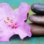 Alternative Therapies as Strategies for Healing